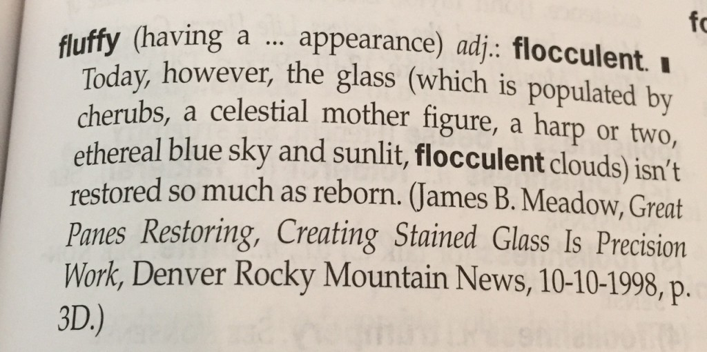 So this exercise was a bit of a fail, because I am NOT going to use the term flocculent to describe FLUFFI.  It's too close to flatulent, don't you think?